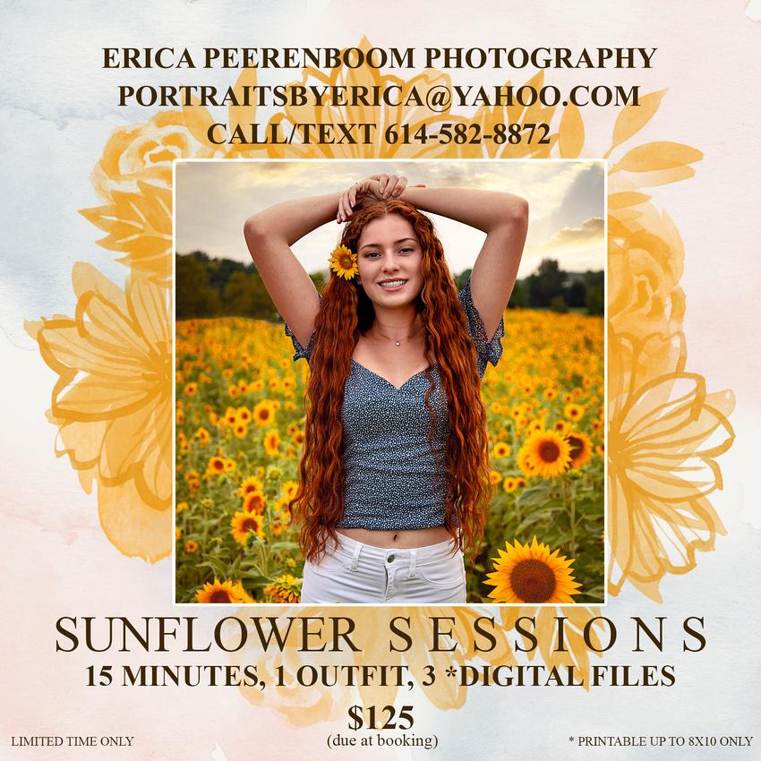 sunflowerBloomMarketingBoard-5x5